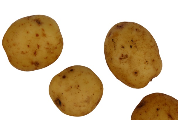 Ando kartul kartulisort
