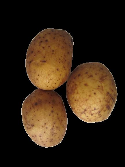 teele kartul kartulisort